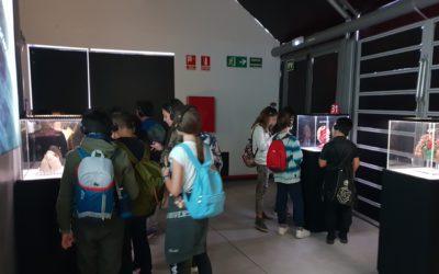 Visita a l'exposició Human Bodies